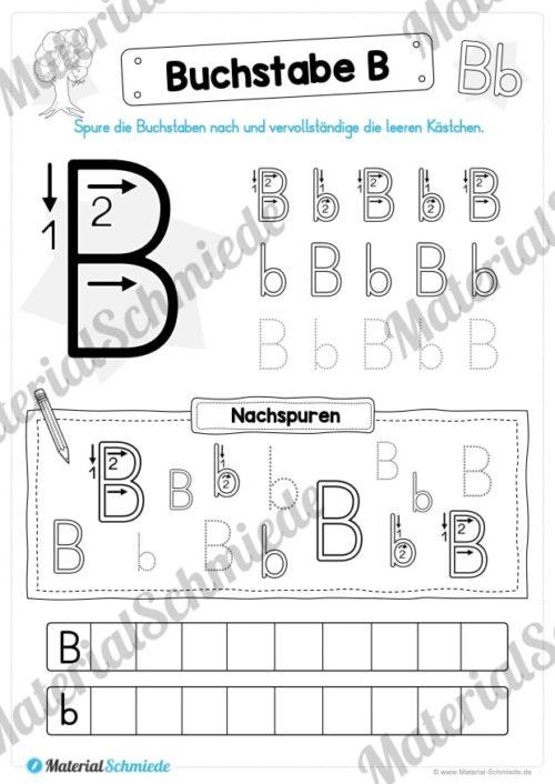 Materialpaket: Buchstabe B/b schreiben lernen (Vorschau 05)