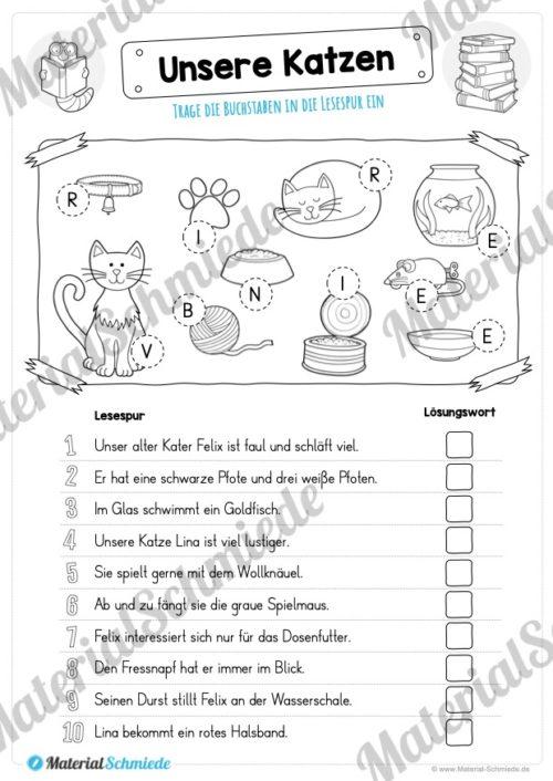 10 Lesespuren (MaterialPaket 01) - Vorschau 07