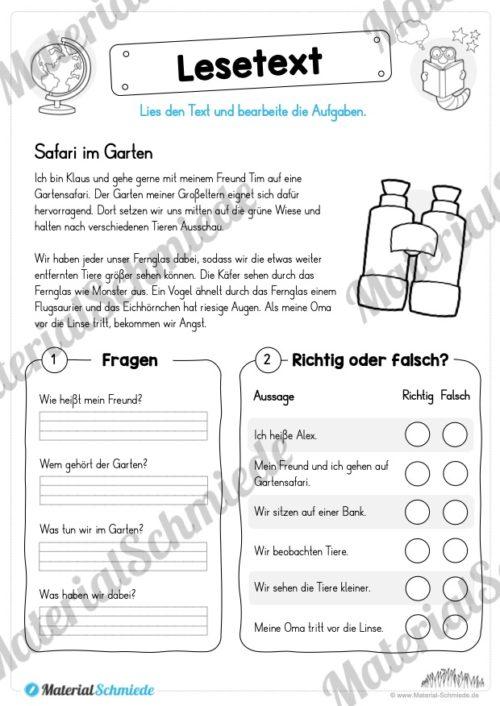 Materialpaket Lesetexte (Vorschau 05)