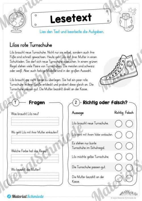Materialpaket Lesetexte (Vorschau 08)