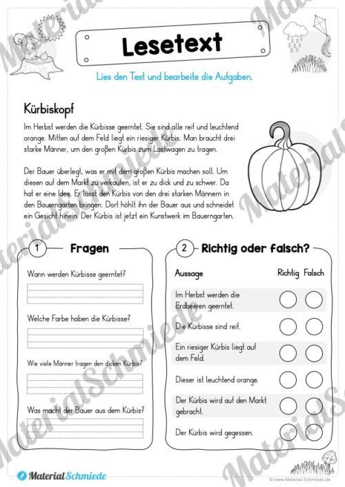 10 Lesetexte zum Herbst (Vorschau 09)