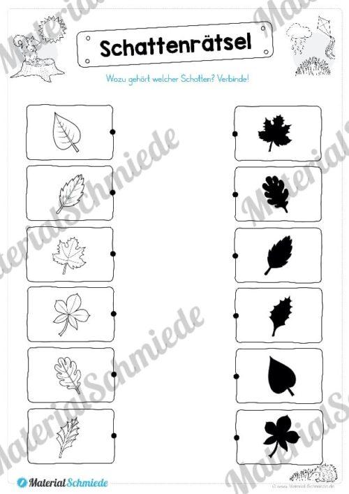 15 Rätsel zum Herbst für die 1. und 2. Klasse (Vorschau 08)
