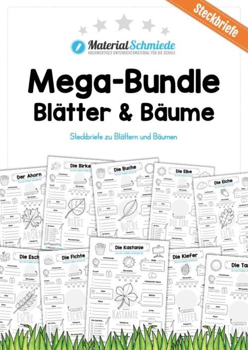 Mega-Bundle: Steckbriefe Blätter & Bäume