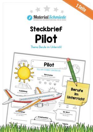 Steckbrief Pilot
