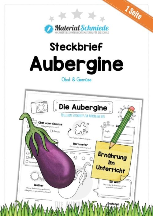 Steckbrief Aubergine