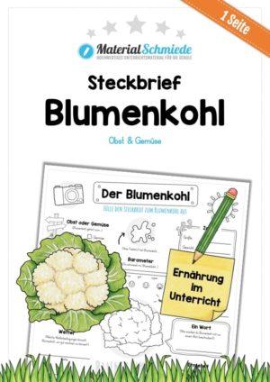 Steckbrief Blumenkohl