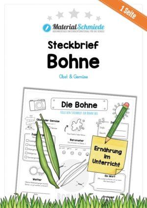 Steckbrief Bohne