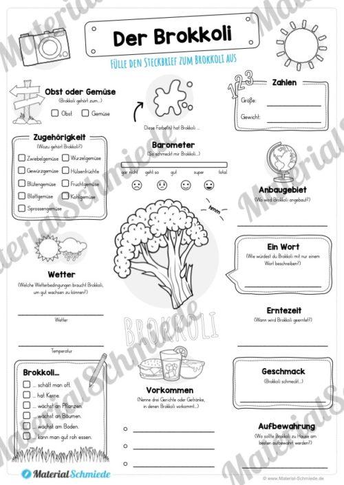 Steckbrief Brokkoli (Vorschau)