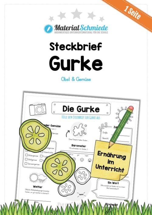 Steckbrief Gurke