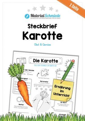 Steckbrief Karotte / Wurzel