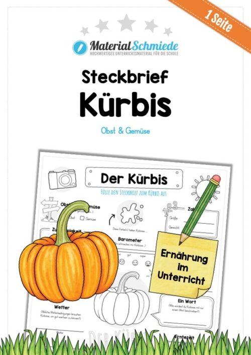 Steckbrief Kürbis
