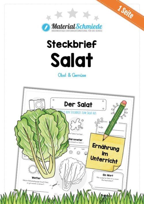 Steckbrief Salat