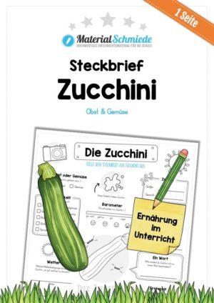 Steckbrief Zucchini