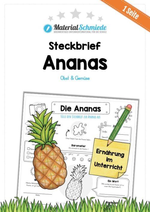 Steckbrief Ananas