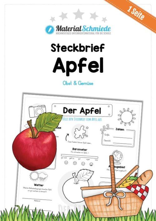 Steckbrief Apfel