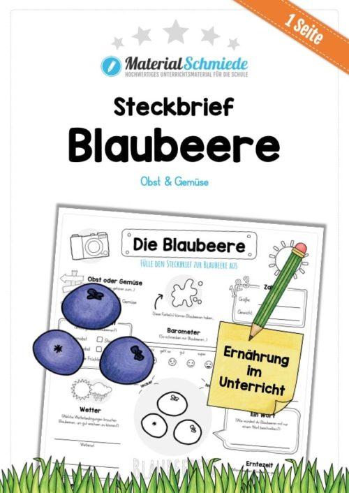Steckbrief Blaubeere