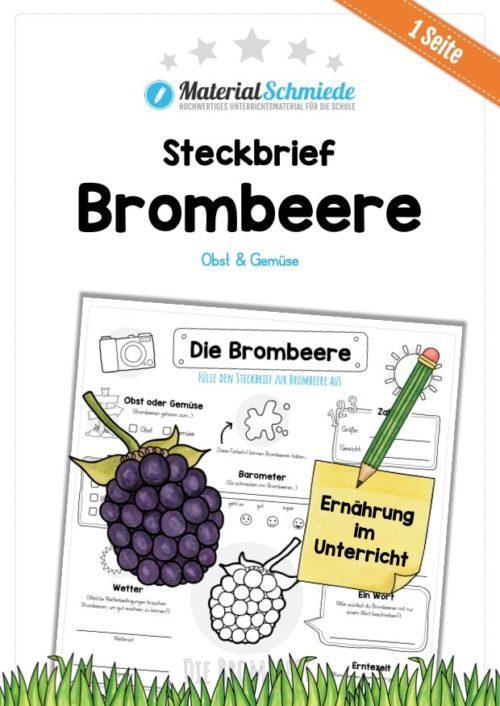 Steckbrief Brombeere