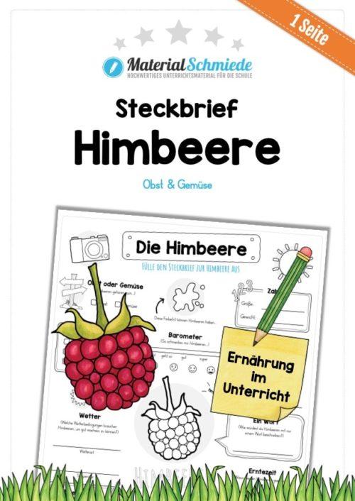 Steckbrief Himbeere