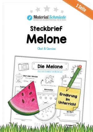 Steckbrief Melone