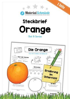 Steckbrief Orange