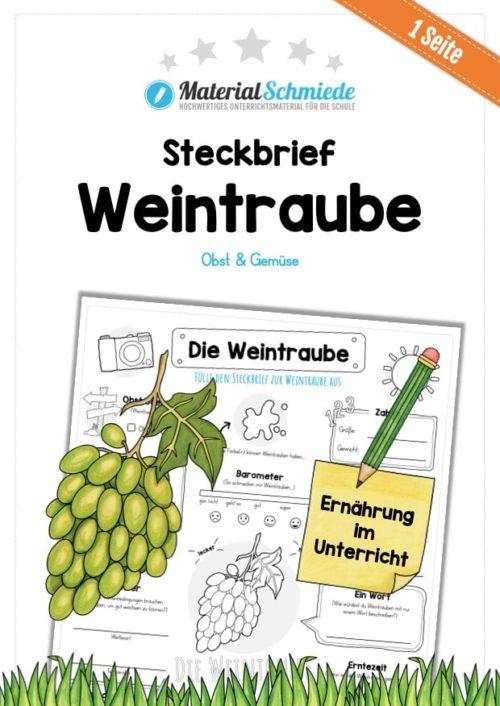 Steckbrief Weintrauben