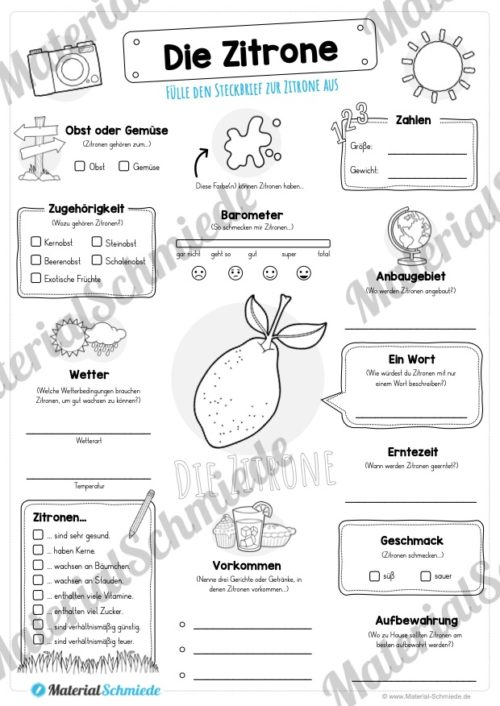 Steckbrief Zitrone (Vorschau)