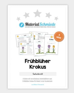 Frühblüher Krokus: Materialpaket