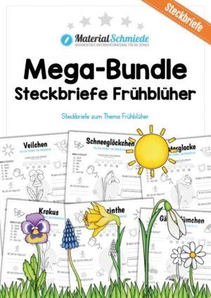 Mega-Bundle: Steckbriefe Frühblüher (6 Arbeitsblätter)