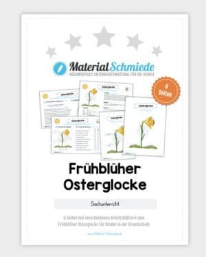 Frühblüher Osterglocke: Materialpaket