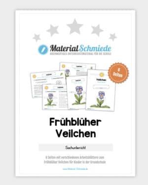 Frühblüher Veilchen: Materialpaket