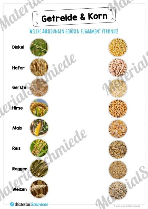 MaterialPaket: Getreide (Vorschau 07)
