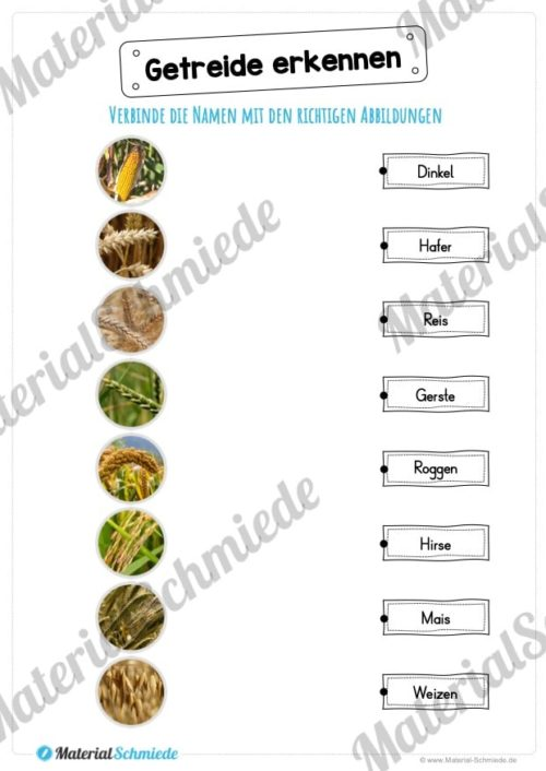 MaterialPaket: Getreide (Vorschau 09)