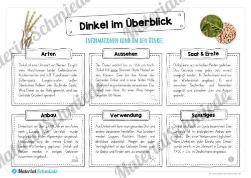 MaterialPaket: Getreide Dinkel (Vorschau 03)