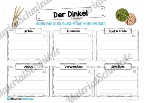 MaterialPaket: Getreide Dinkel (Vorschau 04)