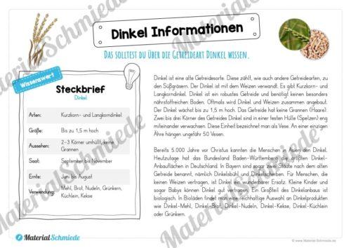 MaterialPaket: Getreide Dinkel (Vorschau 05)