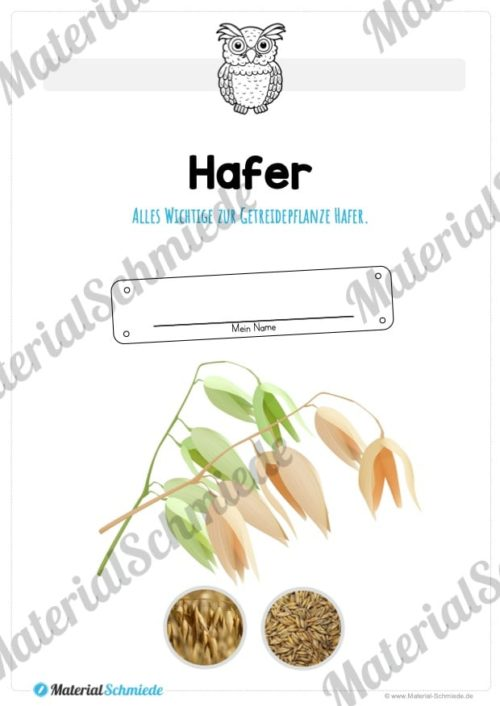 MaterialPaket: Getreide Hafer (Vorschau 01)