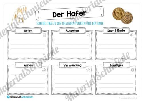 MaterialPaket: Getreide Hafer (Vorschau 04)