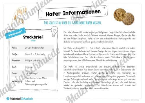 MaterialPaket: Getreide Hafer (Vorschau 05)