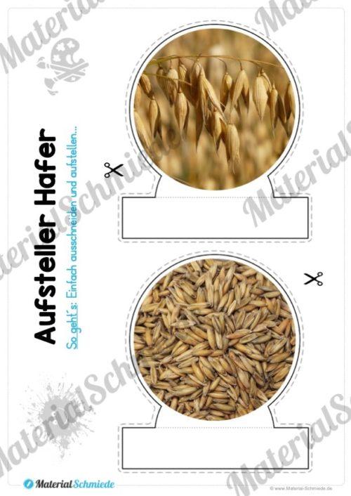 MaterialPaket: Getreide Hafer (Vorschau 08)