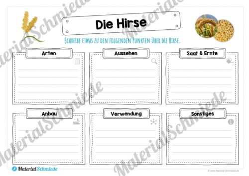 MaterialPaket: Getreide Hirse (Vorschau 04)