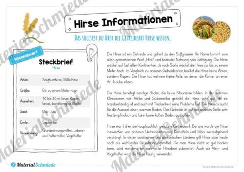MaterialPaket: Getreide Hirse (Vorschau 05)