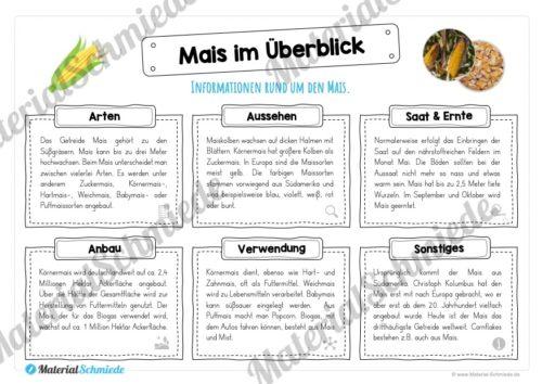 MaterialPaket: Getreide Mais (Vorschau 03)