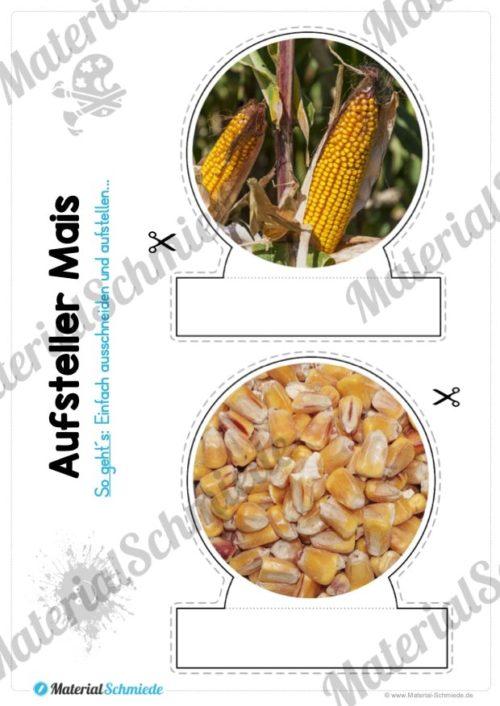 MaterialPaket: Getreide Mais (Vorschau 09)