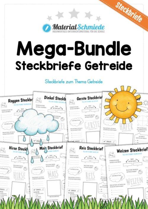 Mega-Bundle: Steckbriefe Getreide (8 Arbeitsblätter)