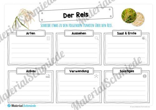 MaterialPaket: Getreide Reis (Vorschau 03)