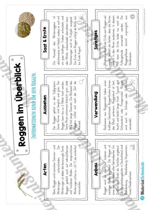 MaterialPaket: Getreide Roggen (Vorschau 03)