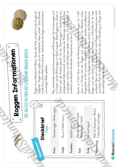 MaterialPaket: Getreide Roggen (Vorschau 05)