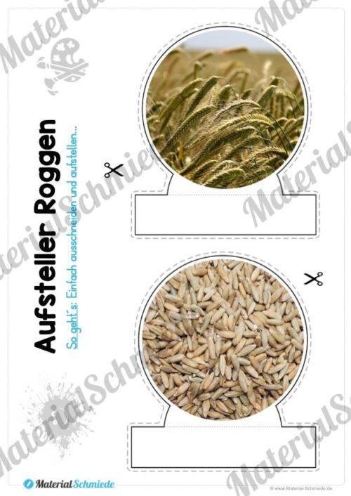 MaterialPaket: Getreide Roggen (Vorschau 09)