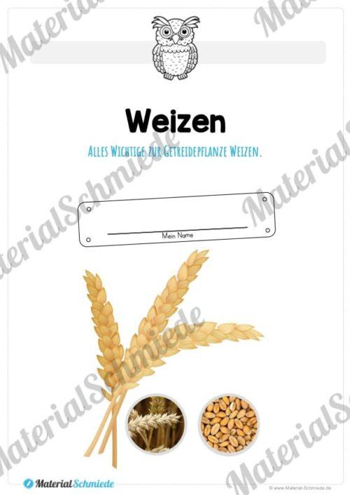 MaterialPaket: Getreide Weizen (Vorschau 01)