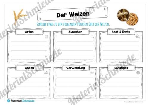 MaterialPaket: Getreide Weizen (Vorschau 04)